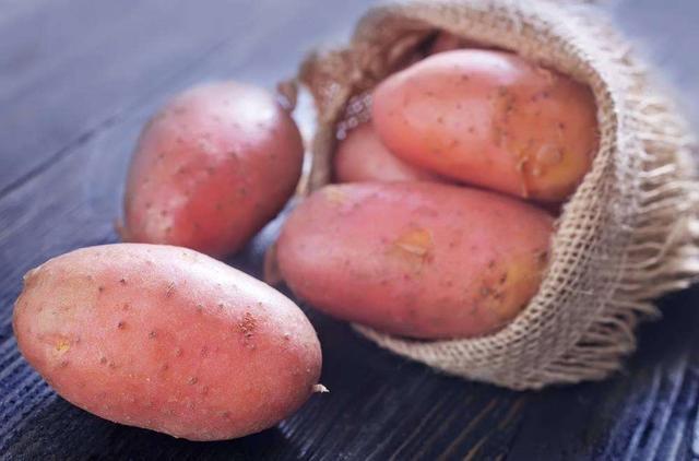 中国薯网携手天润飞华,开启马铃薯种薯智能种植
