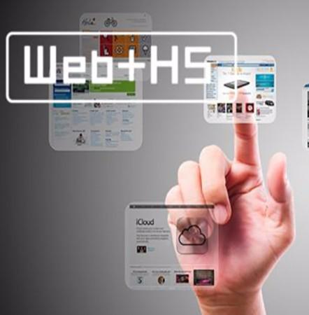 天润飞华网站建设高端公司