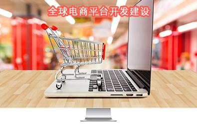 中国电商平台建设中心