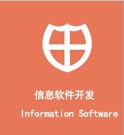 信息软件开发