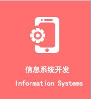 信息系统开发