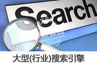 定制开发 搜索引擎 行业_大型(行业)搜索引擎 定制开发