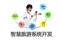 定制开发 智慧 系统_智慧旅游系统 定制开发