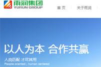 雨润集团网站建设
