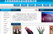 北京津盛鑫泰电线电缆有限公司网站建设
