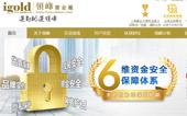 领峰贵金属网站建设
