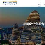 传世(中国)地产顾问网站建设