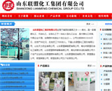 山东联盟化工集团有限公司网站建设