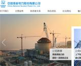 中国核能电力股份有限公司网站建设