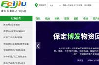 Feijiu网网站建设