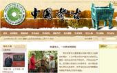 中国考古网站建设