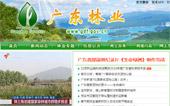 广东林业网网站建设