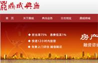 北京鼎成典当行有限公司网站建设