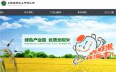 海丰米业网站建设