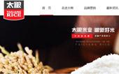 东莞市太粮米业有限公司网站建设