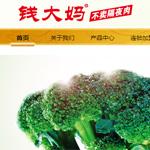 广州钱大妈农产品有限公司网站建设