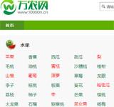万农网网站建设