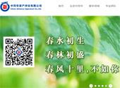 中同华资产评估有限公司网站建设
