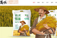 深圳万域包装设计公司网站建设