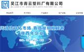 山东力扬集团网站建设