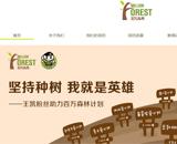 百万森林网站建设