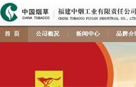 福建中烟工业有限责任公司网站建设
