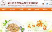 吴川市天然食品加工有限公司网站建设