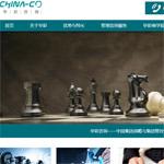 华彩集团网站建设