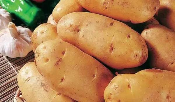 中国薯网携手天润智力,开启马铃薯种薯智能种植