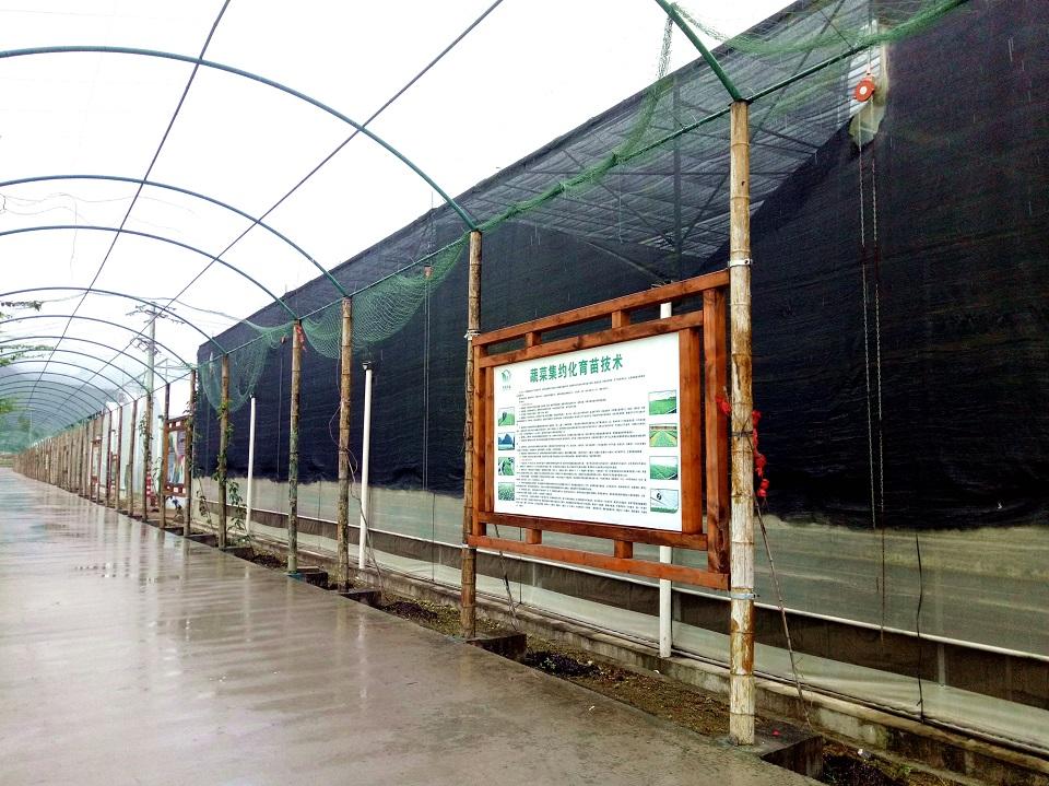 温室蔬菜育苗中心
