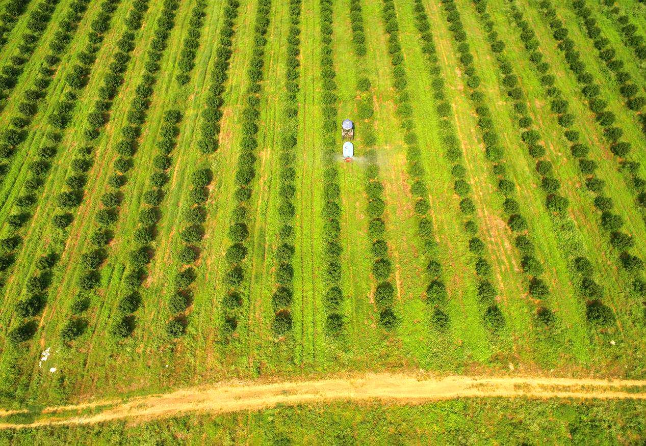 什么是智慧农业?