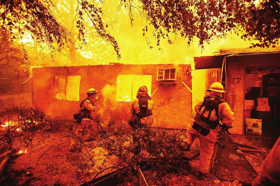 美国加州山火频发,森林火灾防范应该怎么做?