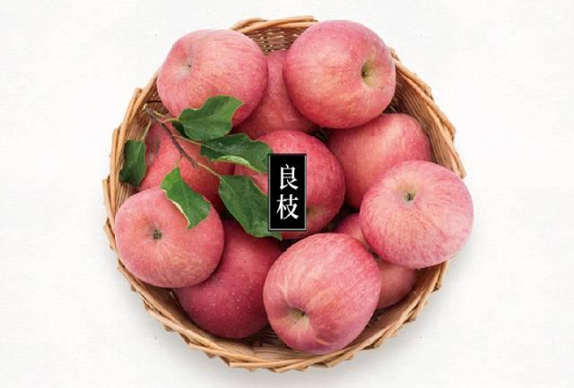 """""""良枝""""苹果的热销背后,是对种植管理标准的恪守"""