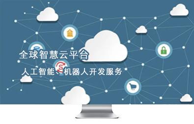 中国软件系统开发