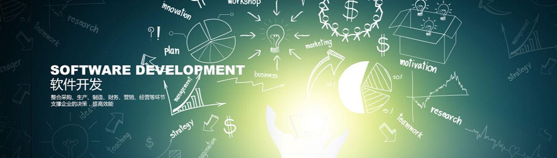 软件及系统开发