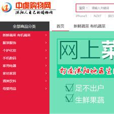 中虞购物网网站建设